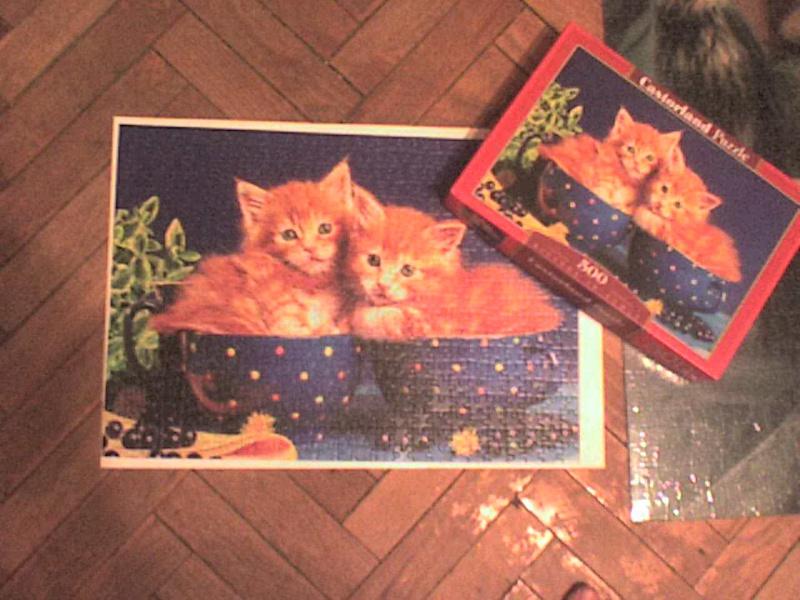 Иллюстрация 1 из 7 для Puzzle-500. Котята (В-51212) | Лабиринт - игрушки. Источник: Роза с шипами