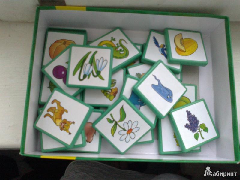 Иллюстрация 1 из 6 для Игра 80303 Лото: Растения - животные | Лабиринт - игрушки. Источник: бейбудова  кямаля
