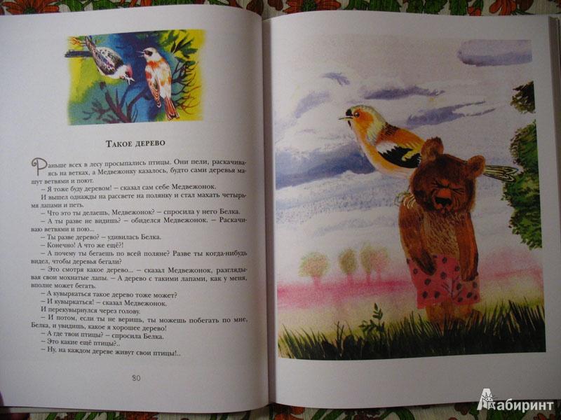 Иллюстрация 12 из 108 для Правда, мы будем всегда? Сказки - Сергей Козлов   Лабиринт - книги. Источник: dar_jan