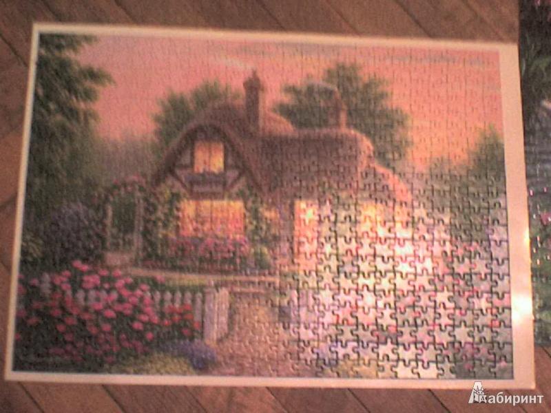 Иллюстрация 1 из 8 для Лепесток розы, 500 деталей (B-51700)   Лабиринт - игрушки. Источник: Роза с шипами