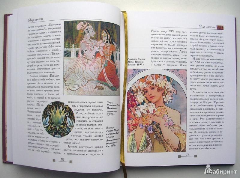 Иллюстрация 1 из 19 для Мир цветов. Истории, загадки, факты - Андрей Лысиков | Лабиринт - книги. Источник: Allee