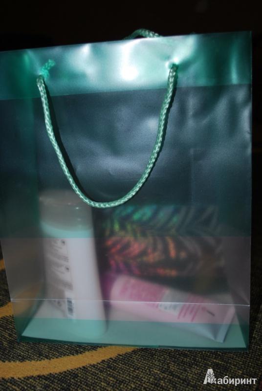 Иллюстрация 1 из 6 для Подарочный пакет из пластика, в ассортименте (DDPC) | Лабиринт - сувениры. Источник: Журавлёва  Анна