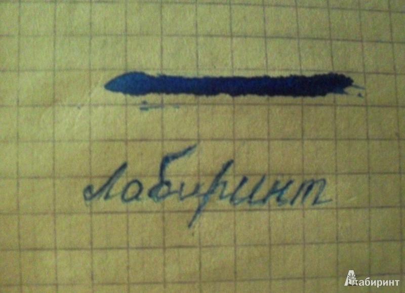 Иллюстрация 1 из 2 для Тушь жидкая 70мл (300019) синяя   Лабиринт - канцтовы. Источник: Миронова  Кристина