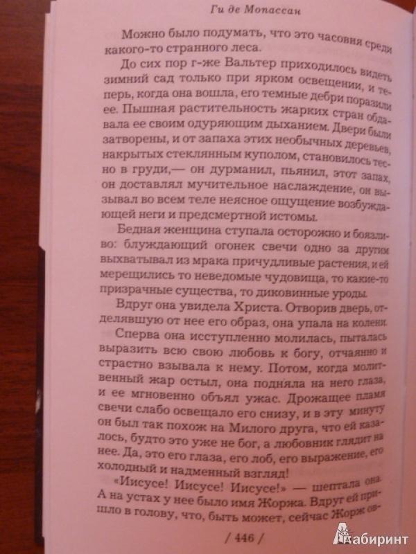 Иллюстрация 1 из 12 для Милый друг - Ги Мопассан | Лабиринт - книги. Источник: elenak