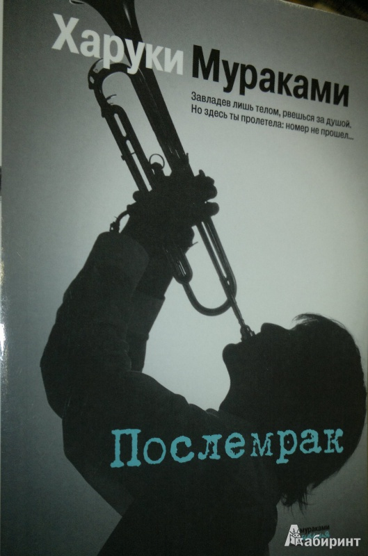Иллюстрация 1 из 14 для Послемрак - Харуки Мураками | Лабиринт - книги. Источник: Леонид Сергеев