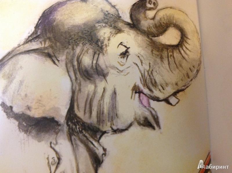 Иллюстрация 14 из 26 для Слон - Александр Куприн | Лабиринт - книги. Источник: illa_k