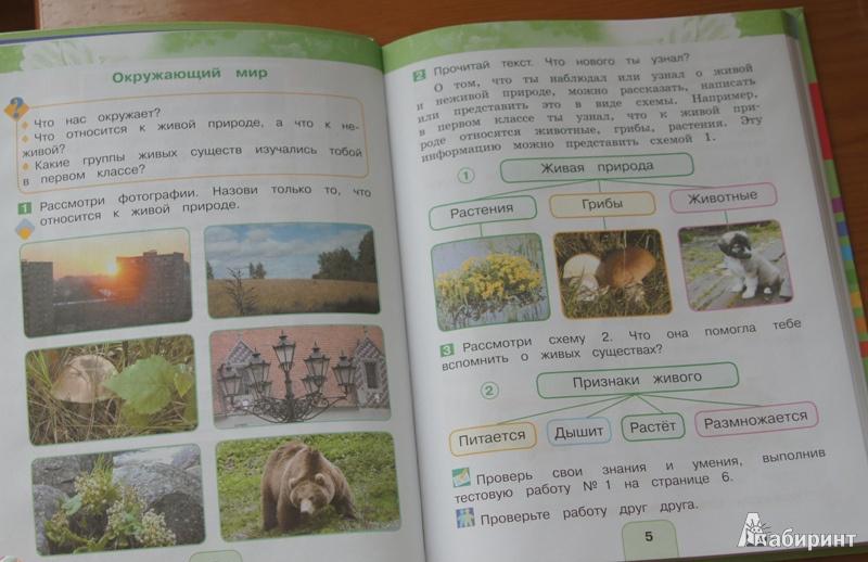 окружающий учебник гдз 2 класс