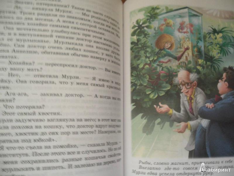 Иллюстрация 1 из 20 для Мурли: Сказочная повесть - Анни Шмидт | Лабиринт - книги. Источник: юлия д.