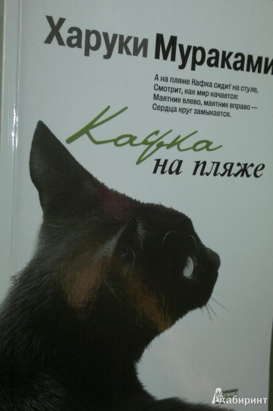 Иллюстрация 1 из 17 для Кафка на пляже - Харуки Мураками   Лабиринт - книги. Источник: Леонид Сергеев