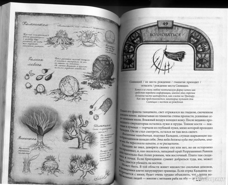 10 Королевство Книга
