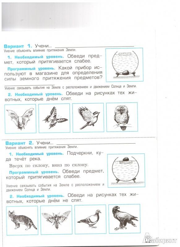 Иллюстрация из для Проверочные и контрольные работы к  Иллюстрация 8 из 27 для Проверочные и контрольные работы к учебнику Окружающий мир