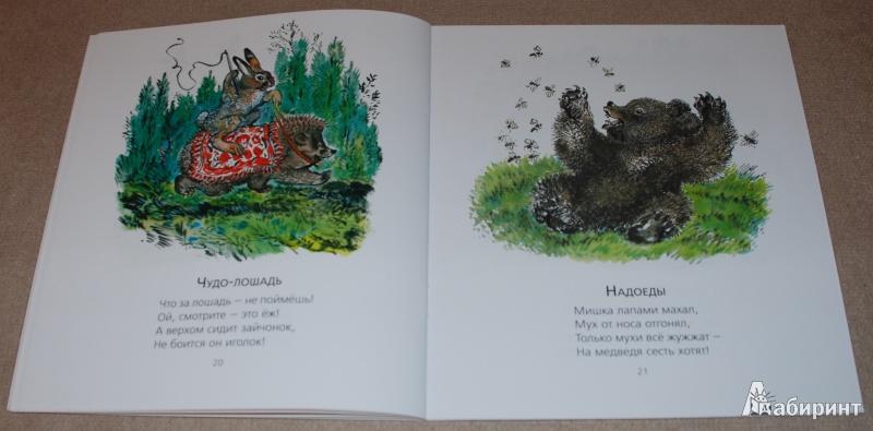 Иллюстрация 21 из 51 для Лиса и заяц - Евгений Чарушин | Лабиринт - книги. Источник: Книжный кот