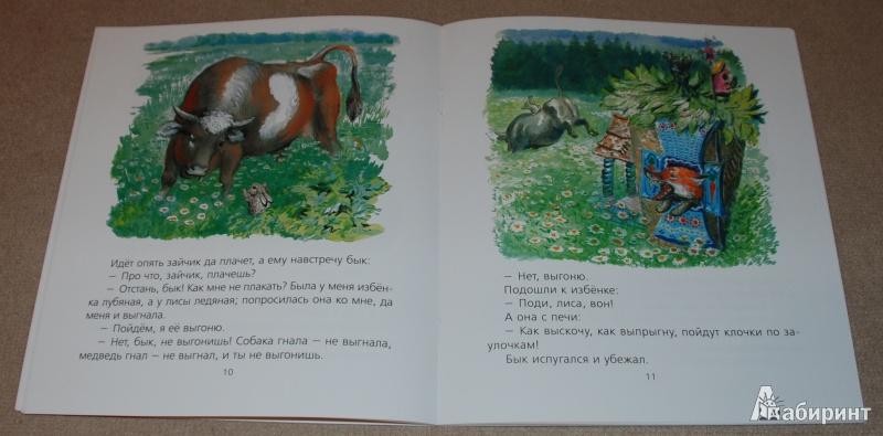 Иллюстрация 16 из 51 для Лиса и заяц - Евгений Чарушин | Лабиринт - книги. Источник: Книжный кот