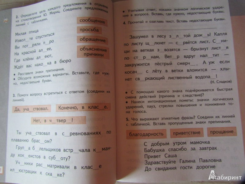 Рабочая тетрадь русского языка 4 класса л я желтовская о б калинина