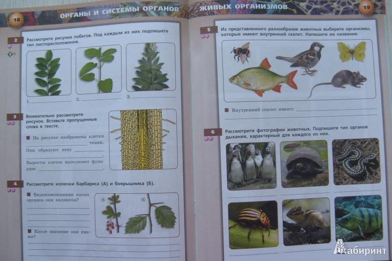 класс биология живые гдз 6 организмы