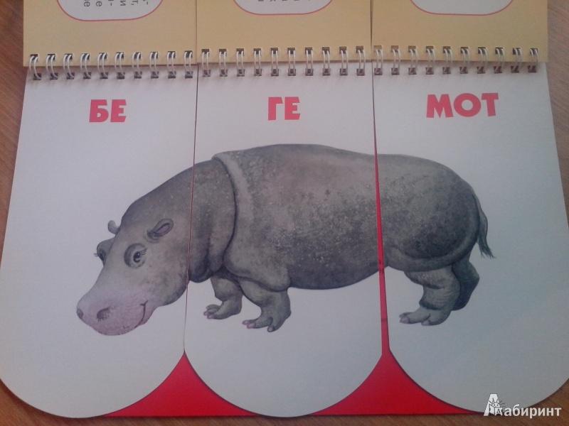 Иллюстрация 8 из 20 для Пере-звери. Собери неведому зверушку. 512 смешных зверей под одной обложкой - Н. Федорова   Лабиринт - книги. Источник: annk79
