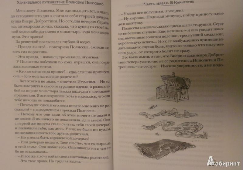 Иллюстрация 16 из 34 для Удивительное путешествие Полисены Пороселло - Бьянка Питцорно   Лабиринт - книги. Источник: Katty