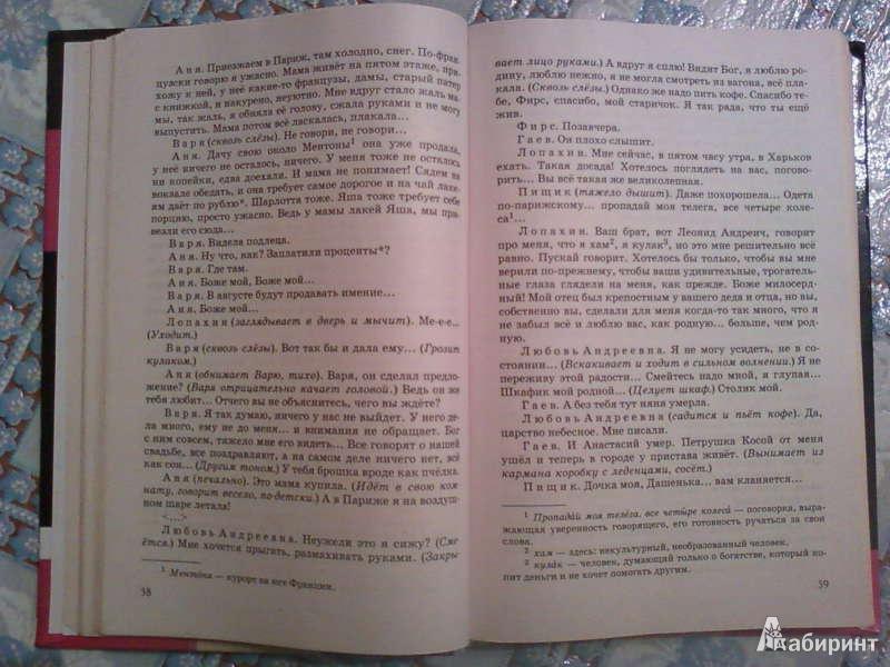 Рабочая програма по литература 8 класс черкезова