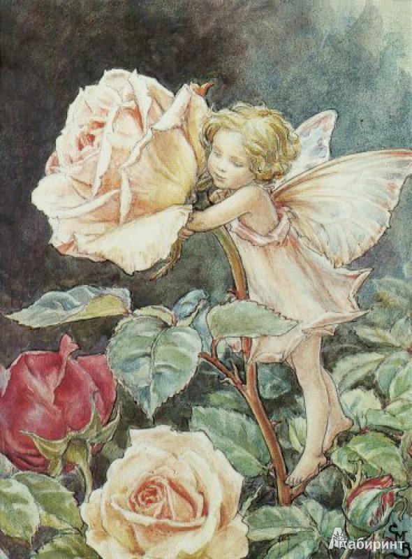 Иллюстрация 1 из 6 для Маленькие феи. Книжка-раскраска для юных леди   Лабиринт - книги. Источник: elvladi