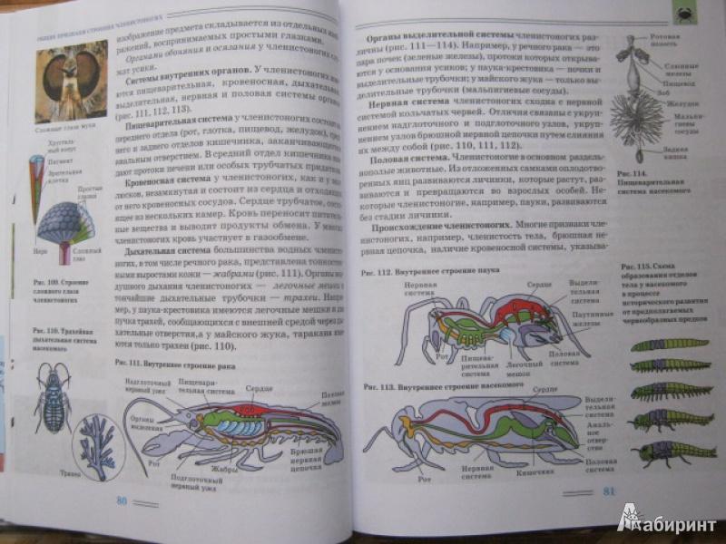 Класс биология решебник 7 никишов