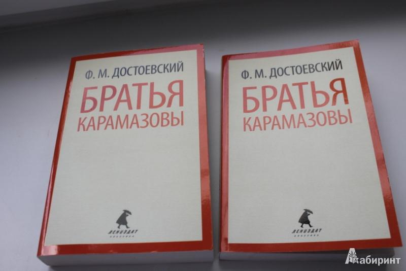Иллюстрация 1 из 14 для Братья Карамазовы в двух книгах. - Федор Достоевский | Лабиринт - книги. Источник: опря  виктория денисовна