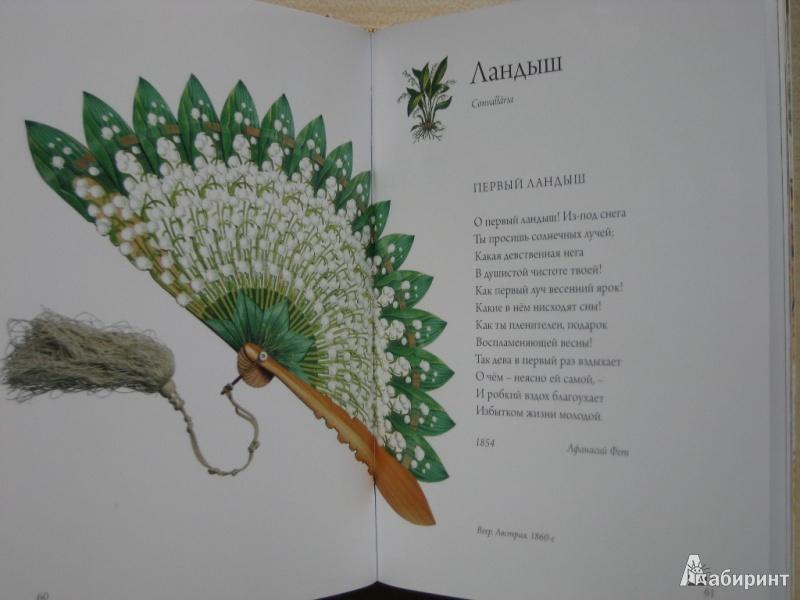 Книга Любовь к ботанике  НОВЫЙ ТИРАЖ ПРЕДЗАКАЗ