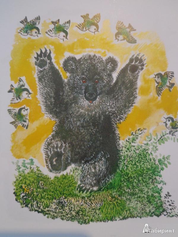 Иллюстрация 45 из 51 для Лиса и заяц - Евгений Чарушин | Лабиринт - книги. Источник: Дербилова  Людмила Владимировна