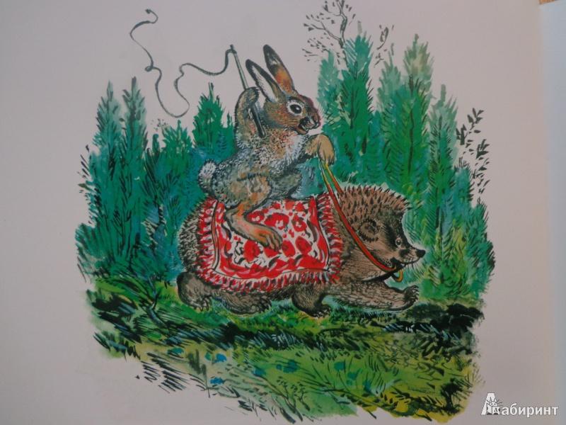 Иллюстрация 48 из 51 для Лиса и заяц - Евгений Чарушин | Лабиринт - книги. Источник: Дербилова  Людмила Владимировна