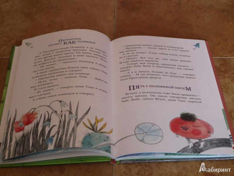 Иллюстрация 8 из 15 для Где же ты, моя капуста? - Михаил Есеновский | Лабиринт - книги. Источник: Лабиринт