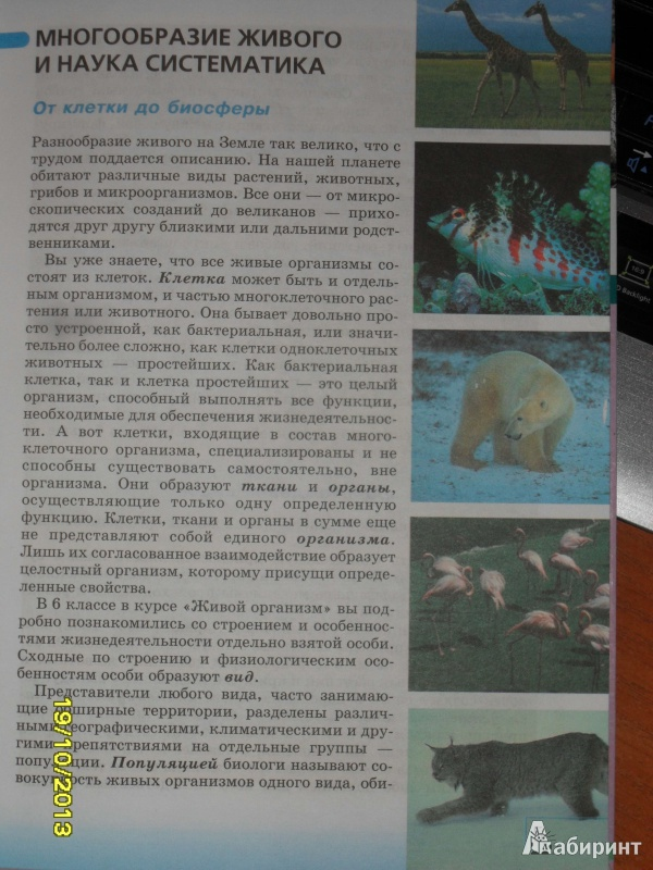 Иллюстрация 1 из 7 для Биология. Многообразие живых организмов. 7 класс. Учебник для общеобразовательных учреждений - Захаров, Сонин | Лабиринт - книги. Источник: Ankosik