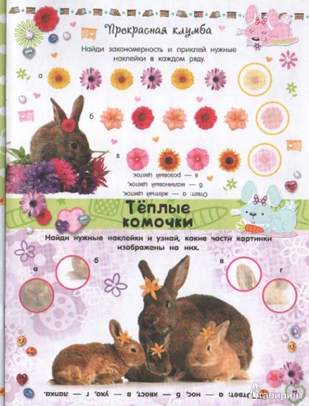 Иллюстрация 9 из 21 для Почеши за ушком! Кролики: такие милые... | Лабиринт - книги. Источник: Лесвякова  Полина Семеновна