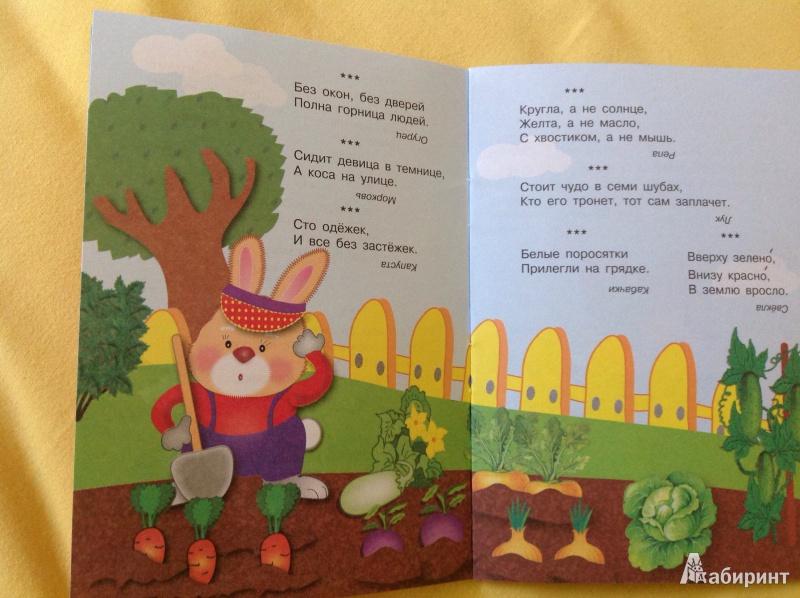 Иллюстрация 2 из 18 для Загадки | Лабиринт - книги. Источник: Ковалева  Наталья