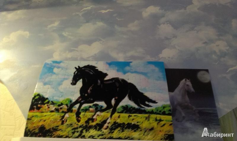 Иллюстрация 1 из 7 для Бархатные пазлы. Вороной конь (2362)   Лабиринт - игрушки. Источник: Юстус  Виктория