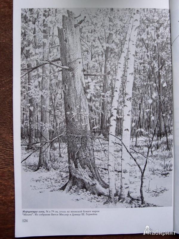 Иллюстрация 1 из 60 для Деревья - Стенли Молцмен | Лабиринт - книги. Источник: Kary
