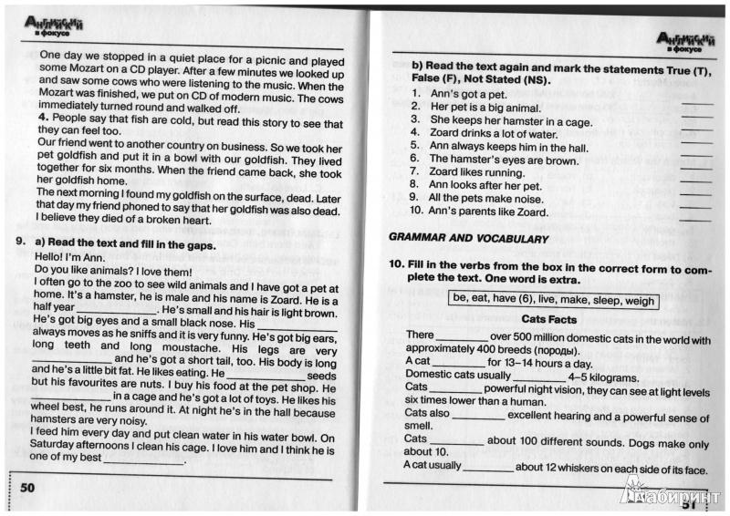 6 гдз в класс переводом учебник языку по с фокусе английскому