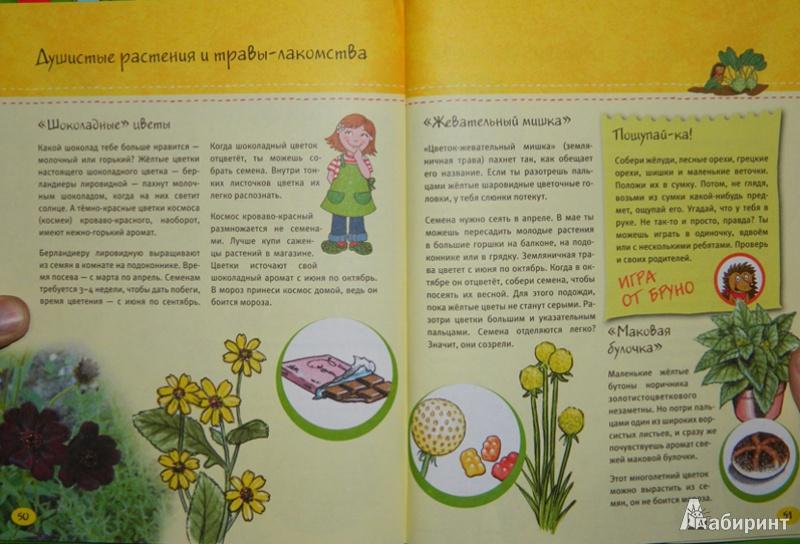 Иллюстрация 1 из 11 для Маленький повар + Маленький садовник - Флото-Штаммен, Кюппер, Вагнер | Лабиринт - книги. Источник: JuNi