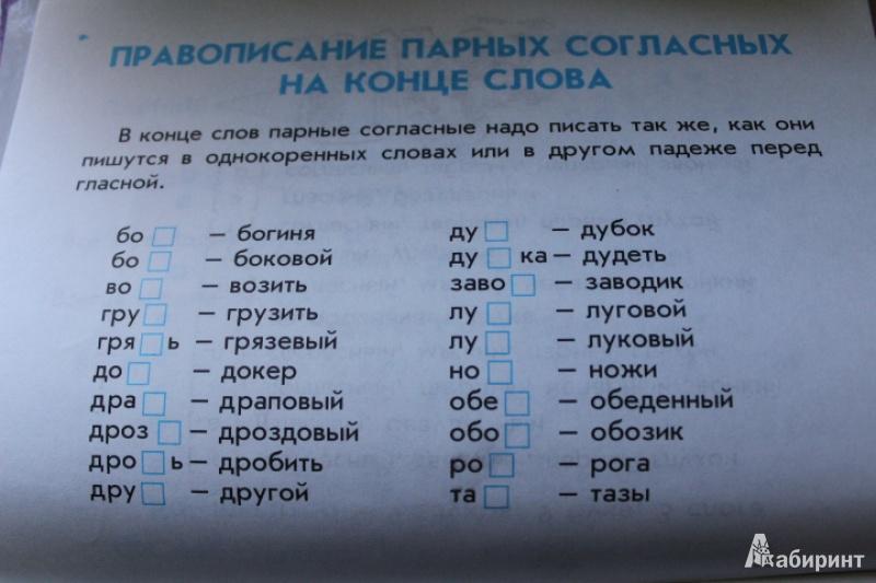 Дружок правила по русскому языку для начальных классов