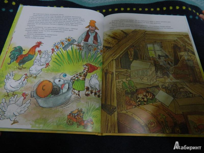 Иллюстрация 20 из 48 для Чужак в огороде - Свен Нурдквист   Лабиринт - книги. Источник: Мама Ольга