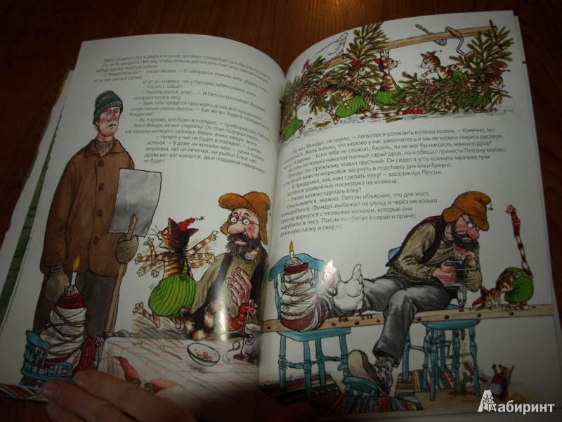 Иллюстрация 23 из 85 для Рождество в домике Петсона - Свен Нурдквист   Лабиринт - книги. Источник: Гусева  Анна Сергеевна