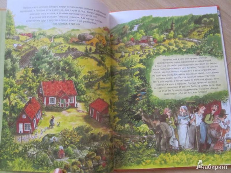Иллюстрация 22 из 49 для Именинный пирог - Свен Нурдквист | Лабиринт - книги. Источник: Shona