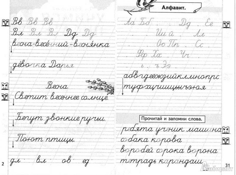Иллюстрация 1 из 19 для Учимся писать. Прописи для 1 класса. В 4-х частях. Часть 4 - Любовь Ефросинина | Лабиринт - книги. Источник: TNadin