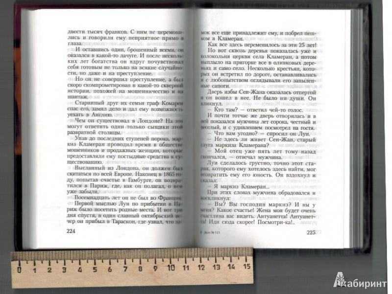 Иллюстрация 1 из 9 для Дело № 113 - Эмиль Габорио | Лабиринт - книги. Источник: Агаточка