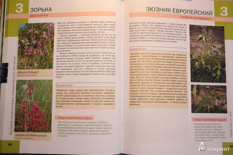 Книги о лекарственных травах другие