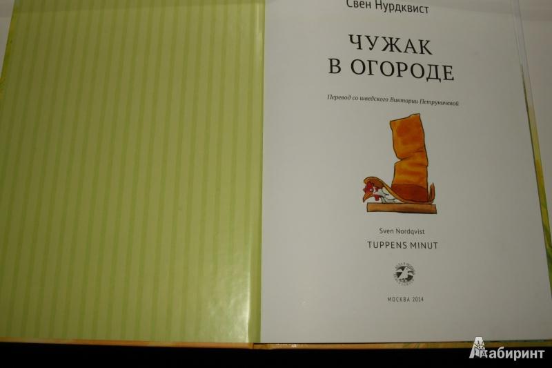 Иллюстрация 32 из 48 для Чужак в огороде - Свен Нурдквист | Лабиринт - книги. Источник: Павлинова  Ирина Евгеньевна