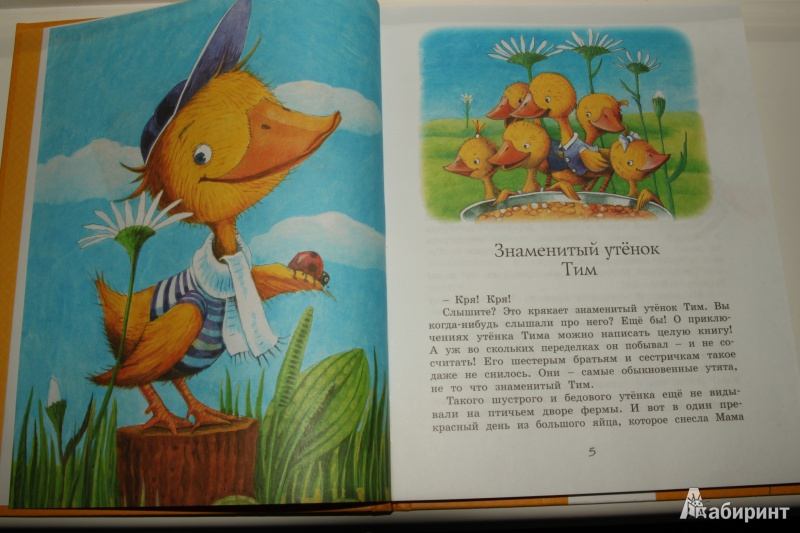 Иллюстрация 8 из 24 для Знаменитый утёнок Тим - Энид Блайтон   Лабиринт - книги. Источник: Павлинова  Ирина Евгеньевна