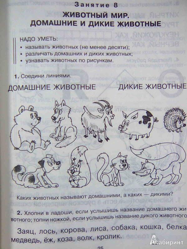Иллюстрация 10 из 23 для Знакомимся с окружающим миром - Ольга Чистякова   Лабиринт - книги. Источник: Салус