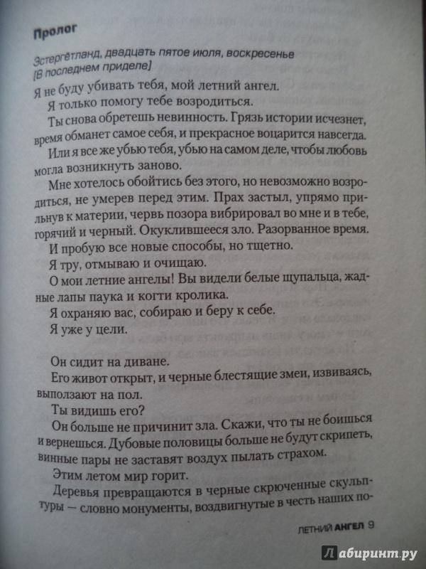Иллюстрация 1 из 10 для Летний ангел - Монс Каллентофт | Лабиринт - книги. Источник: Kirill  Badulin