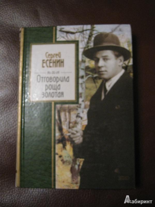 Иллюстрация 1 из 5 для Отговорила роща золотая - Сергей Есенин | Лабиринт - книги. Источник: Стрелец  Евгения
