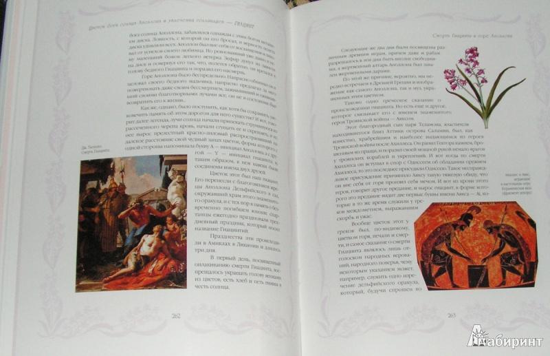 Иллюстрация 7 из 15 для Цветы в легендах и преданиях - Николай Золотницкий | Лабиринт - книги. Источник: Solen