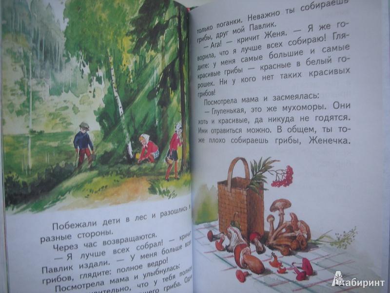 Чучело картинки из книги